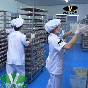 Công nhân sản xuất tỏi đen VIAICOM