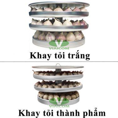 Khay tỏi trắng và khay tỏi thành phẩm máy làm tỏi đen Tiross TS907