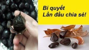 Làm tỏi đen bị ướt nhão, nâu, đen vỏ và bí quyết xử lý như nào