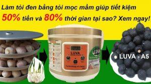 Cách tự làm tỏi đen bằng nồi LUVA A5