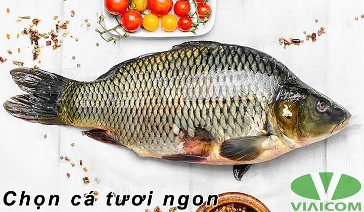 Nướng cá chép bằng nồi chiên không dầu - Chọn cá tươi ngon