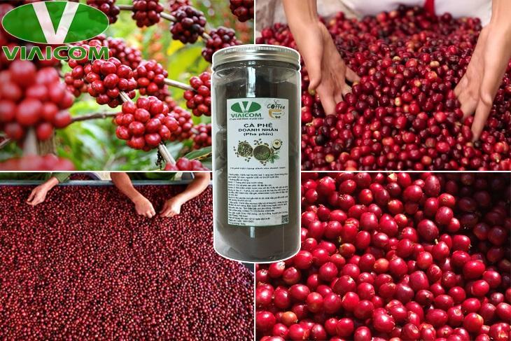 Cà phê doanh nhân số 1 - Chọn lọc từ những trái cà phê chín đỏ