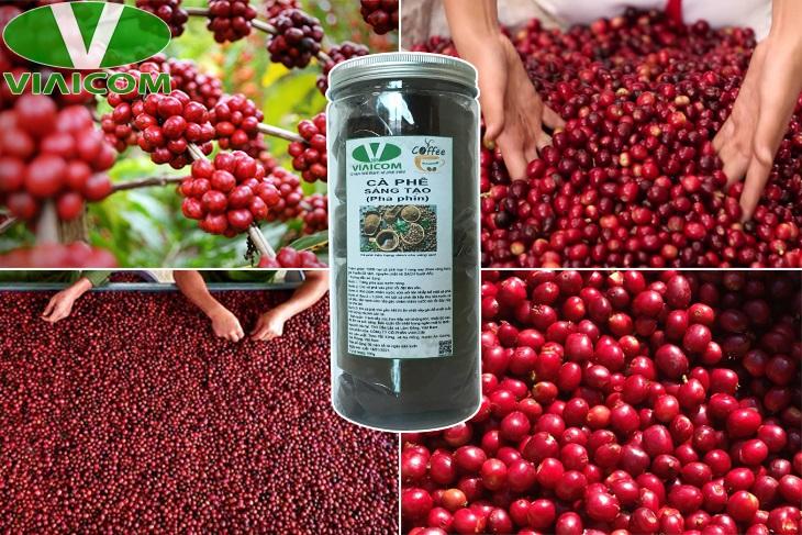 Cà phê sáng tạo 1 - Chọn lọc từ những trái cà phê chín đỏ
